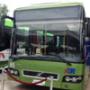 Mercado de buses aún estancado