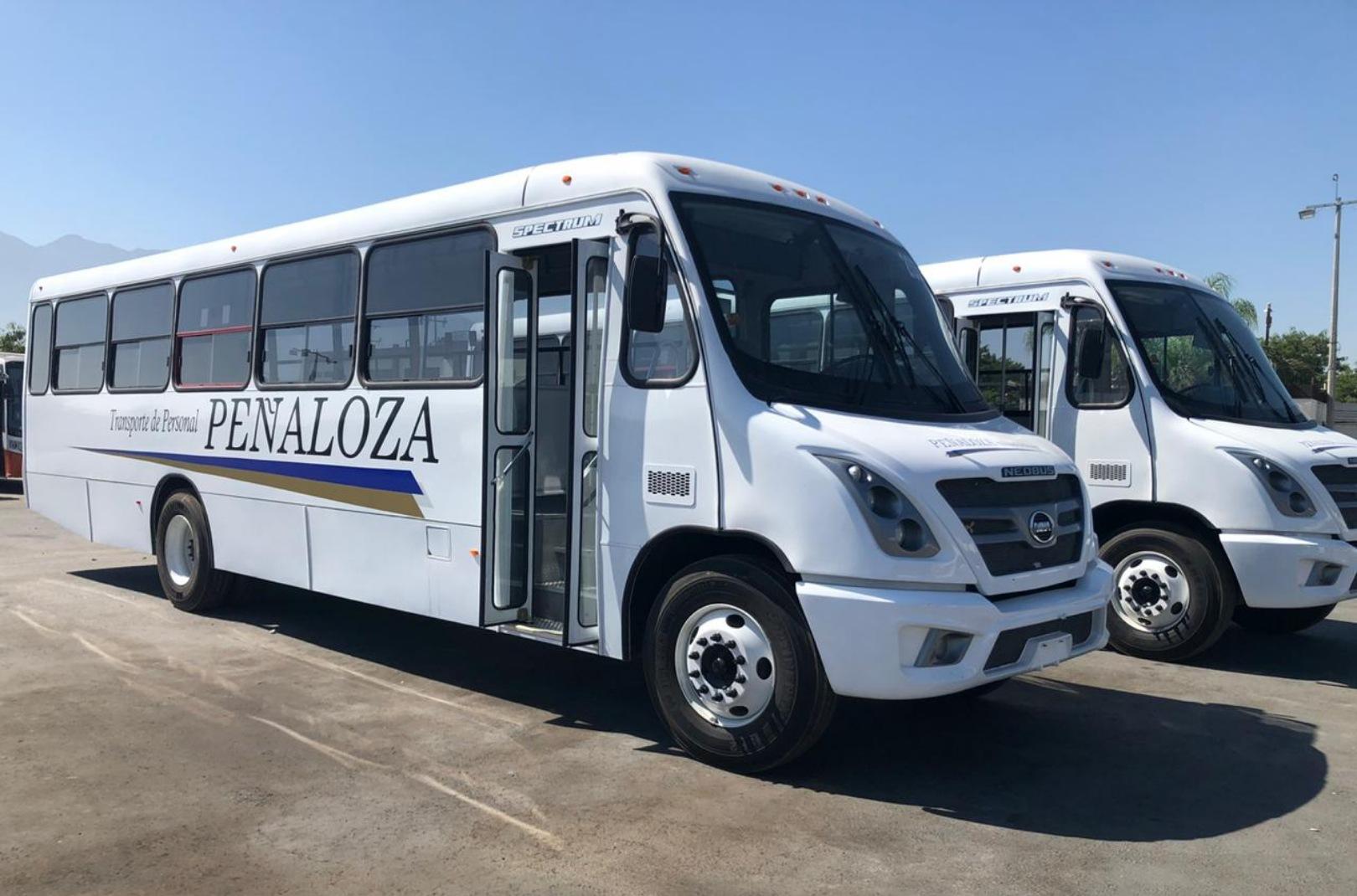Transportes Peñaloza DINA RUNNER