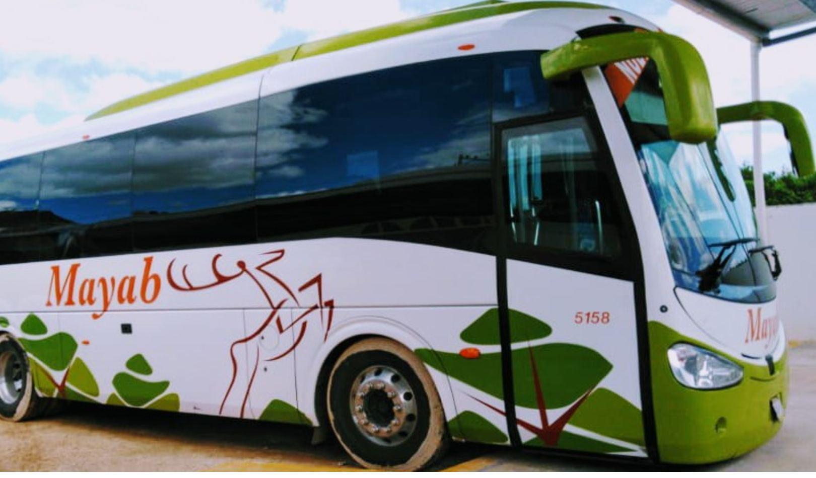 Fundación ADO, Autobuses Mayab, Mobility ADO,