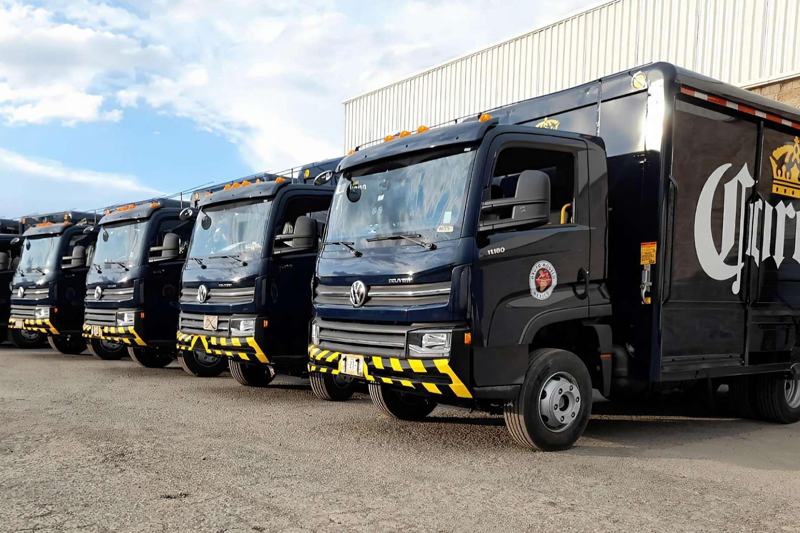 Volkswagen Camiones y Buses Grupo Modelo