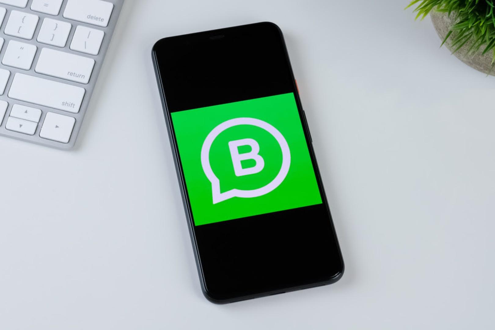 WhatsApp Business Napse Automotriz